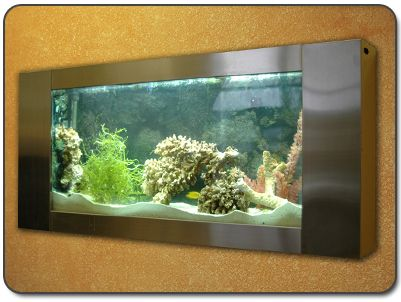 wall mounted fish tank - Google Search | fish tank ideas | Pinterest | Fish  tanks, Fish and Search