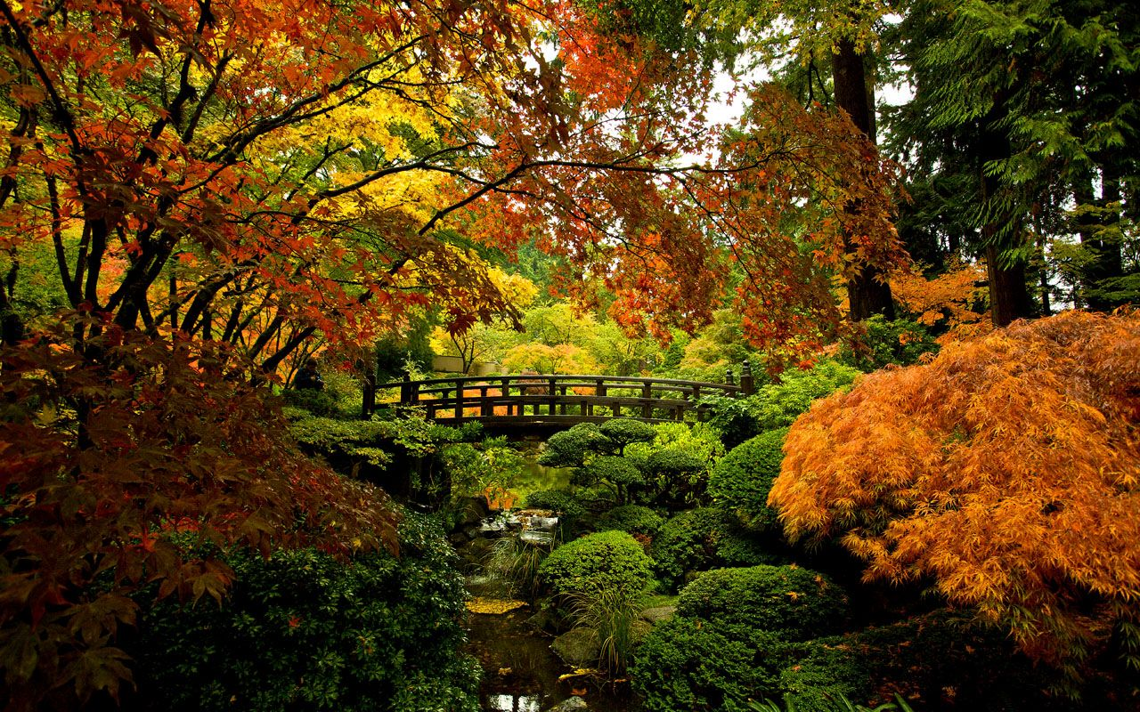 Portland Japanese Garden | Places to go | Pinterest | Portland ...