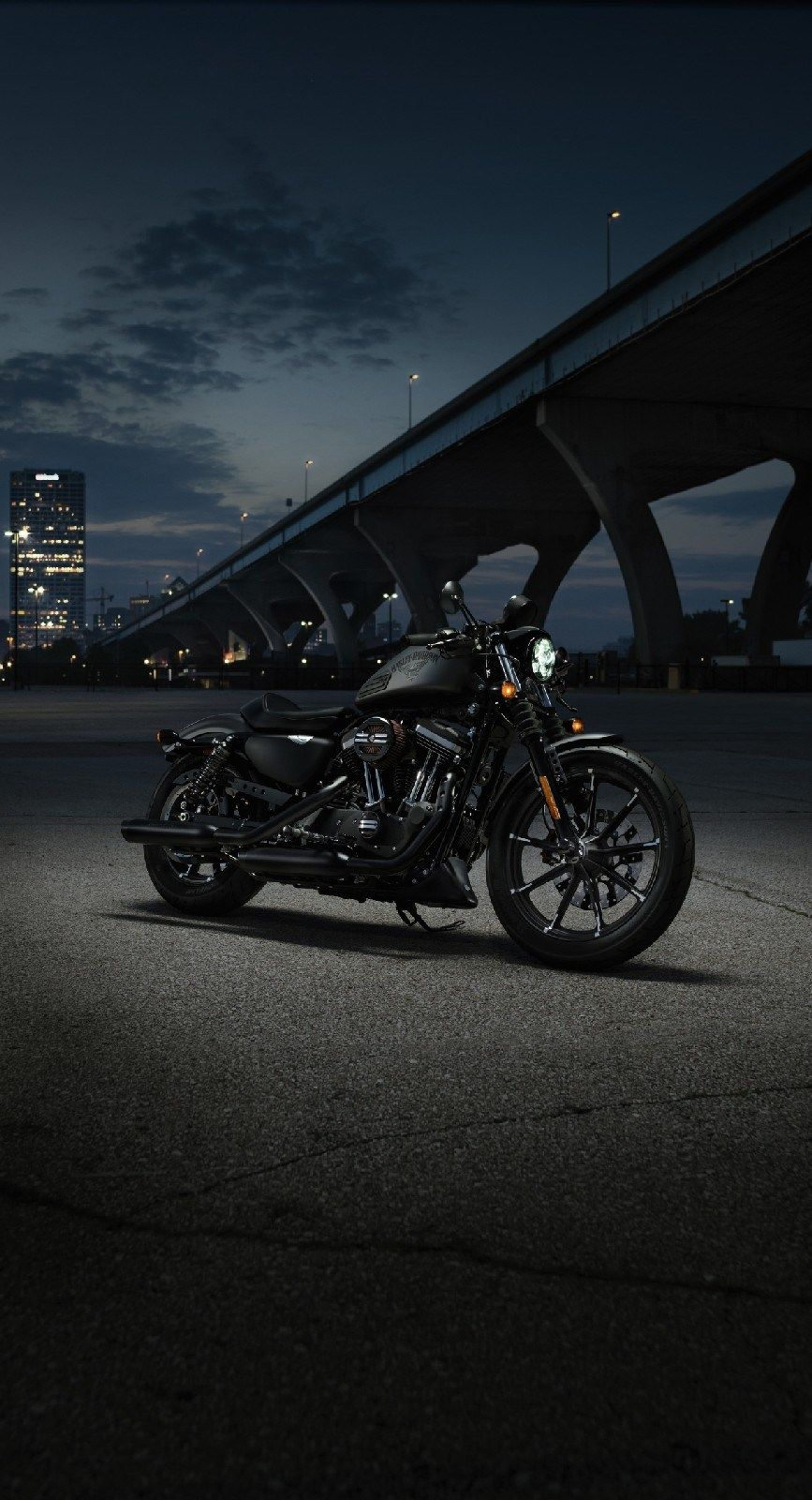 Top Harley Davidson Iron 8 Motorcycle Picture 24 Awesome Indoor Outdoor Harley Davidson Roadster Harley Davidson Wallpaper Harley Davidson Iron 8