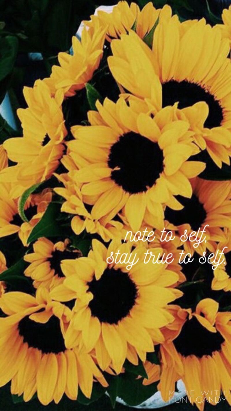 Bryson Tiller lyrics Sunflower wallpaper, Flower wallpaper