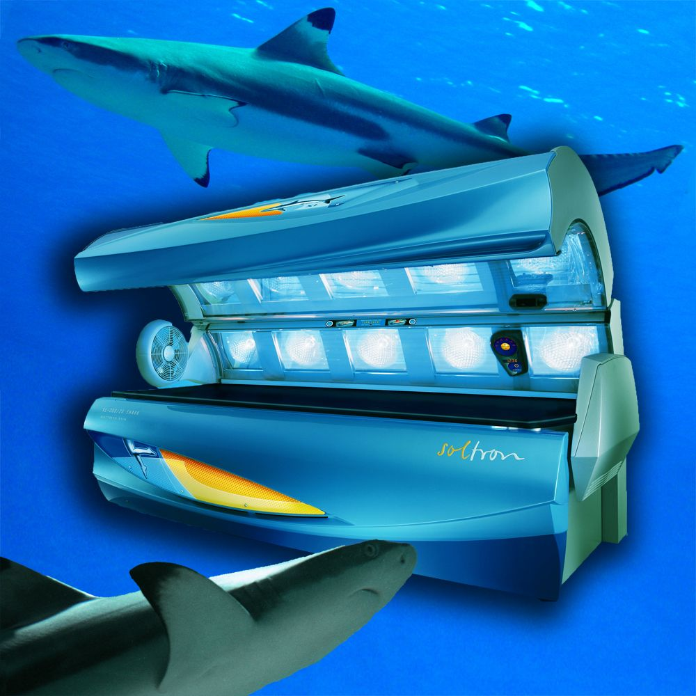 The Soltron SHARK available at UsedBeds.org! #sharkweek