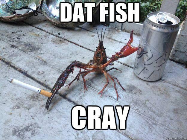 Dat Fish Cray