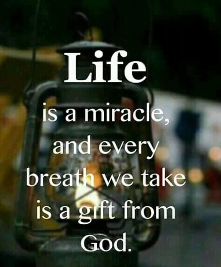 Life is a miracle And every breath we take is a gift from God.