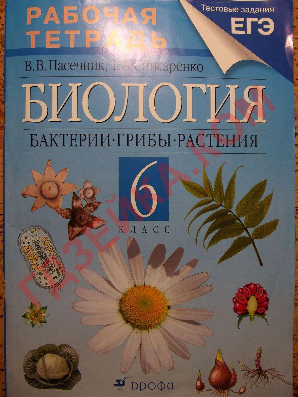 Читать учебник биологии 6 класс снисареноко пасечник