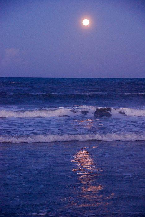 Full Moon over the Ocean by Susanne Van Hulst