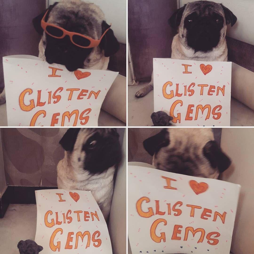 Bookie Enjoying Glisten Gems Pug Pugs Dog Dogfun Puglife