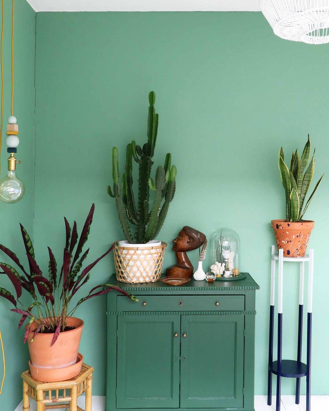 Love that mint paint color   Baba-Boho-Hippie   Pinterest   Mint ...