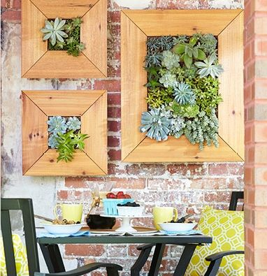 Build a space-saving planter that turns succulent plants into wall ...