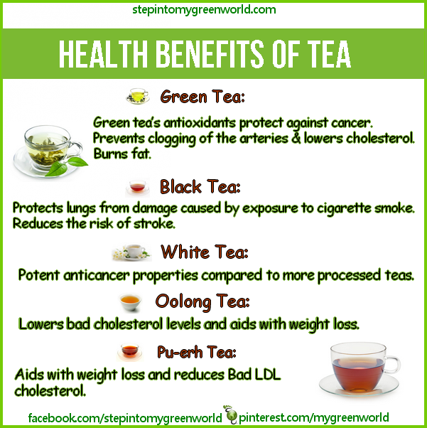 the health benefits of consuming organic green tea The health benefits of drinking tea also give huge advantages to people,  especially women, who seek natural ways to stay beautiful european super- models.