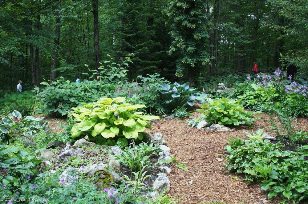 Inspired and inspiring the primozich garden garden for Woodland shade garden designs