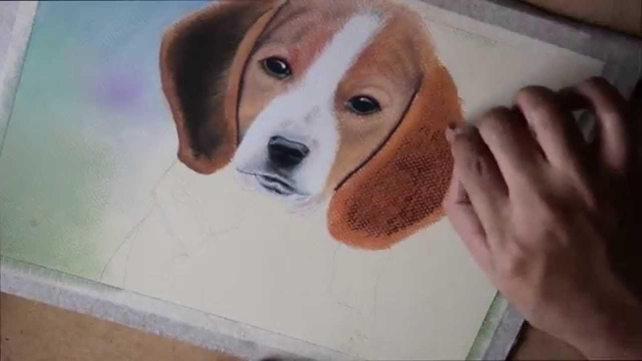 Como Dibujar Y Pintar Un Perro Con Pastel Seco Tiza Pastel Tiza Pastel Pastel Dibujo Pintar Con Pastel