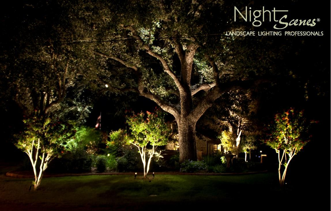 This led lighting project in kingsland texas features a beautiful large live oak tree outdoor - Night yard landscaping with outdoor lights ...