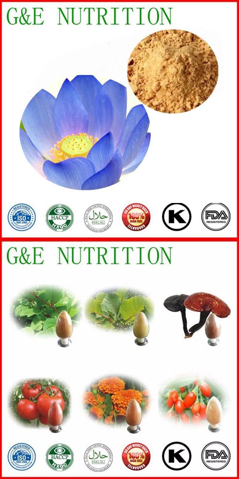 Visit To Buy Best Price Blue Lotus Flower 101 100g