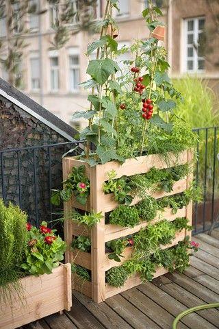 Potager vertical en bois Botanic | Terrasses | Potager vertical ...