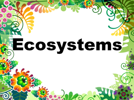 Ecological Succession-Primary and Secondary - YouTube