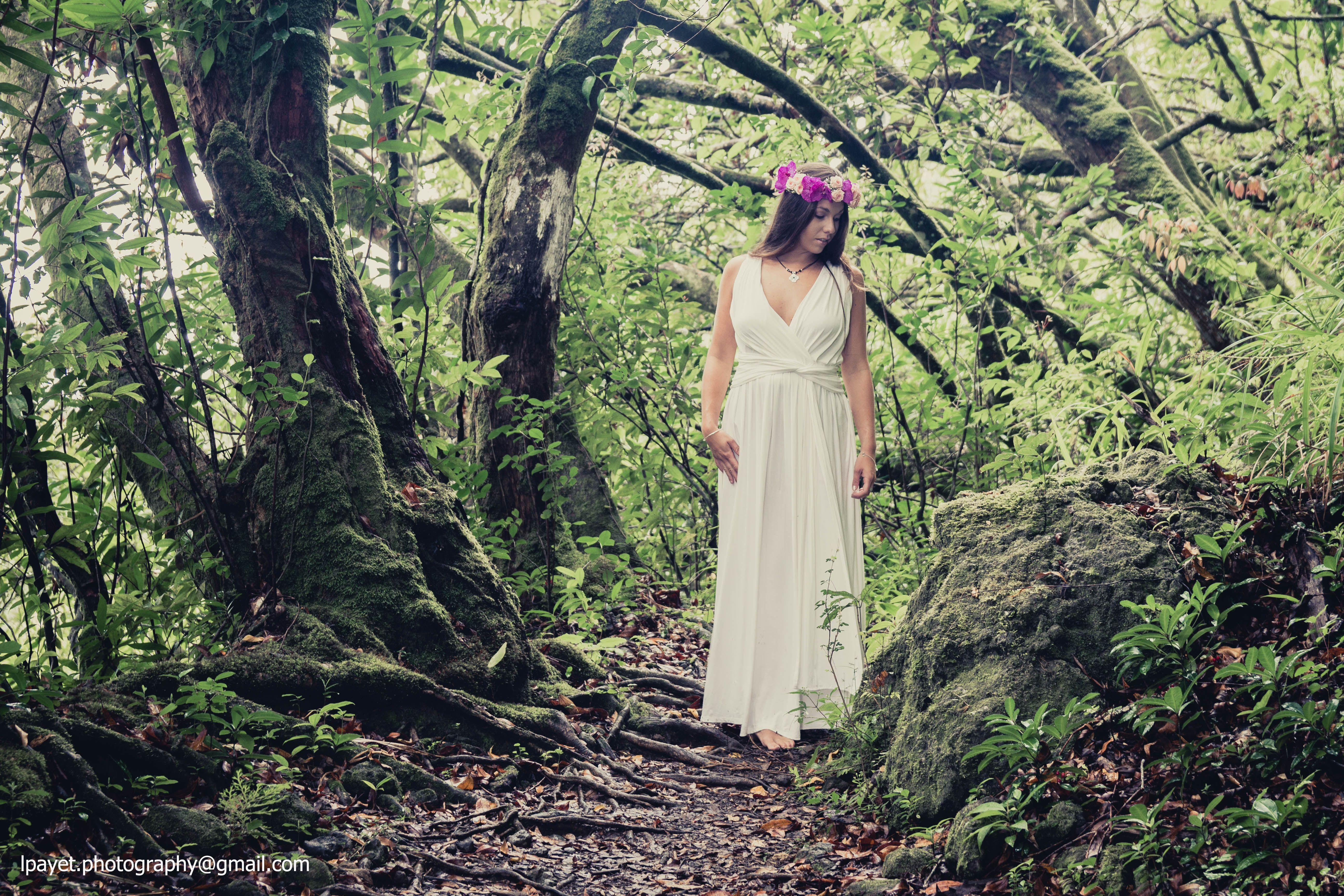 In the woods . / Reunion Island