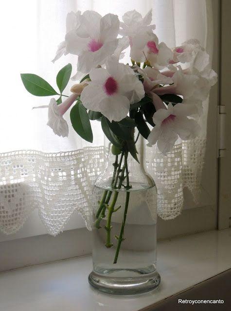 Botellas de cristal para las flores... http://retroyconencanto.blogspot.com.es/2015/07/jarrones-latas-cafeteras-teteras-botellas-flores-decoracion-interiorismo.html