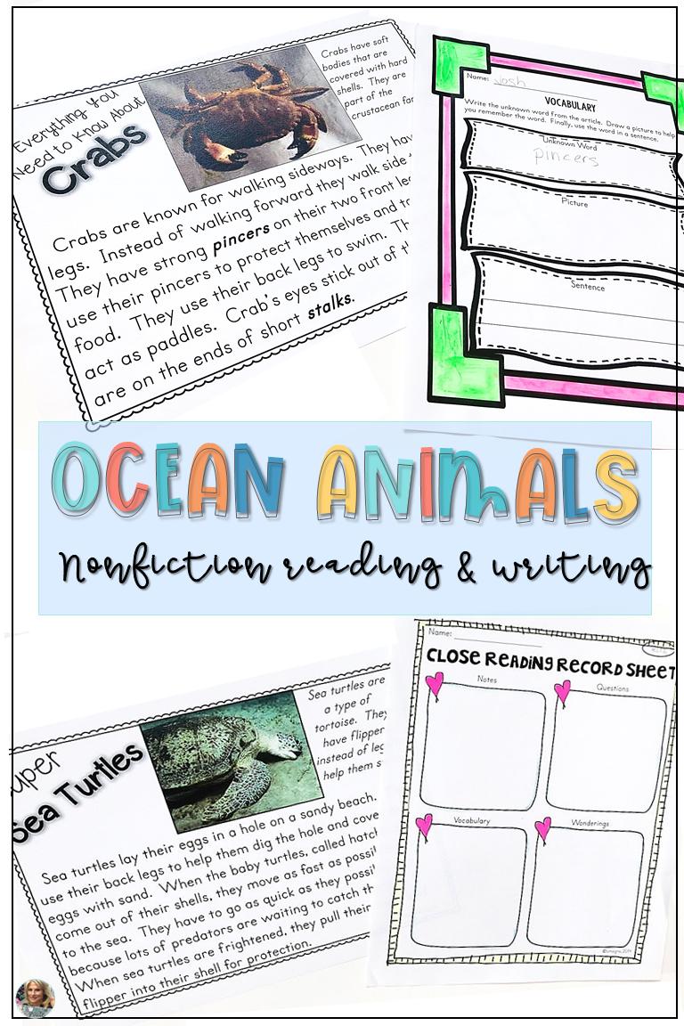 Ocean Animals Lesson Plans   Animal nonfiction [ 1152 x 768 Pixel ]