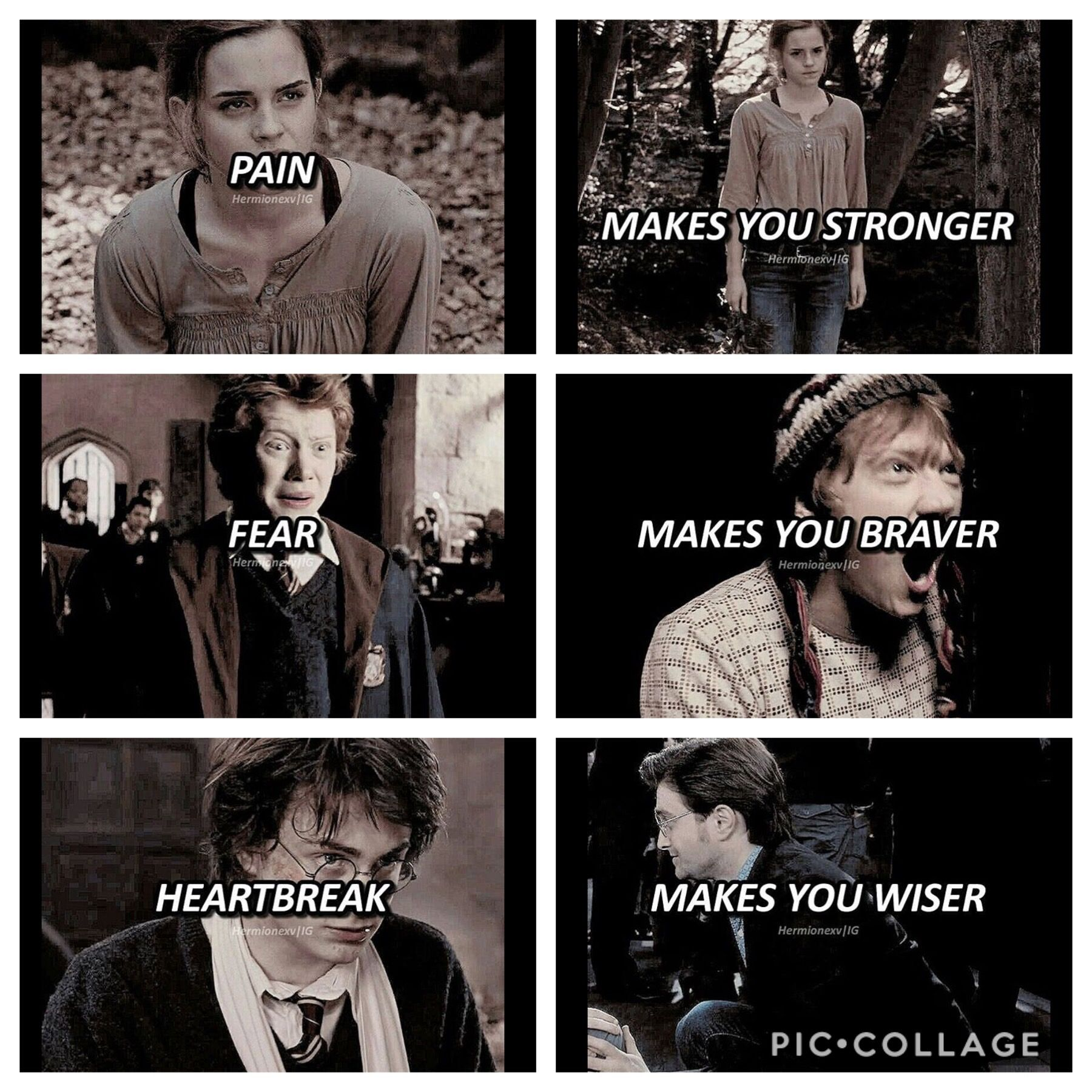 pin by emily brown on harry potter in harry potter
