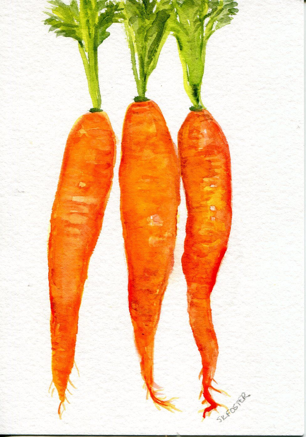 Original Carrots Watercolor Painting 5 X 7 Watercolors Paintings