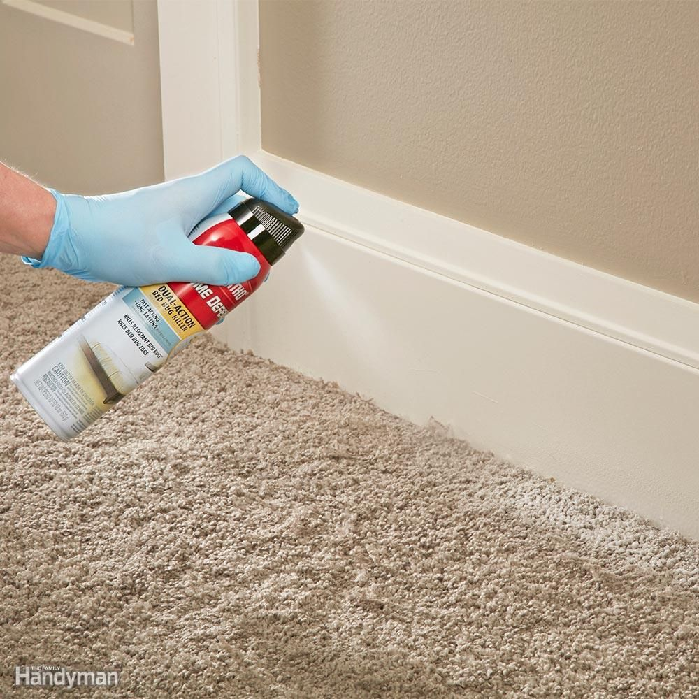 How to get rid of bed bugs a diy guide rid of bed bugs