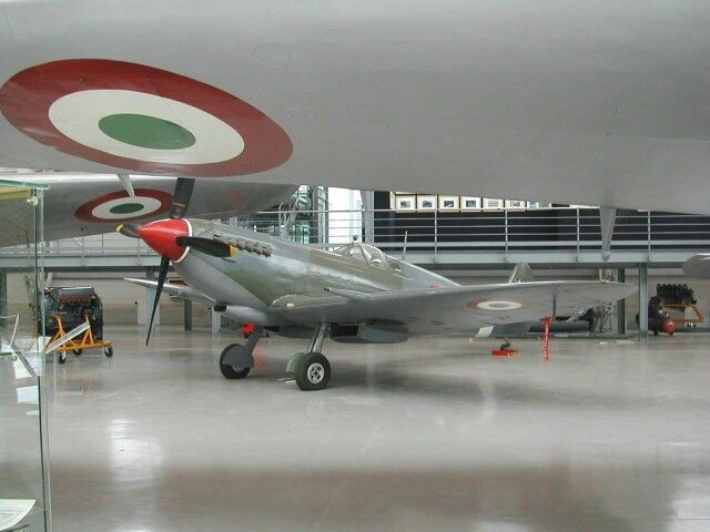 Italian spitfire
