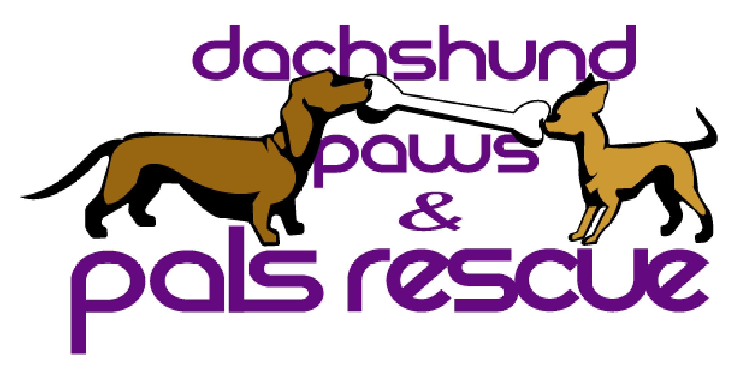 Dachshund Paws Rescue Is One Of The Premier Small Dog Rescue And Adoption Sites In Southern California Paws Rescue Small Dog Rescue Doxie Mom