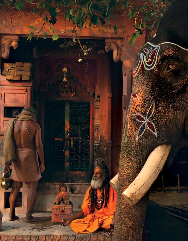 Are India's Elephants Blessed Creatures or Indentured Servants? - See more at: http://blogs.getty.edu/iris/are-indias-elephants-blessed-creatures-or-indentured-servants/?utm_content=buffer46b3f&utm_medium=social&utm_source=twitter.com&utm_campaign=buffer#sthash.zASuEDwL.dpuf