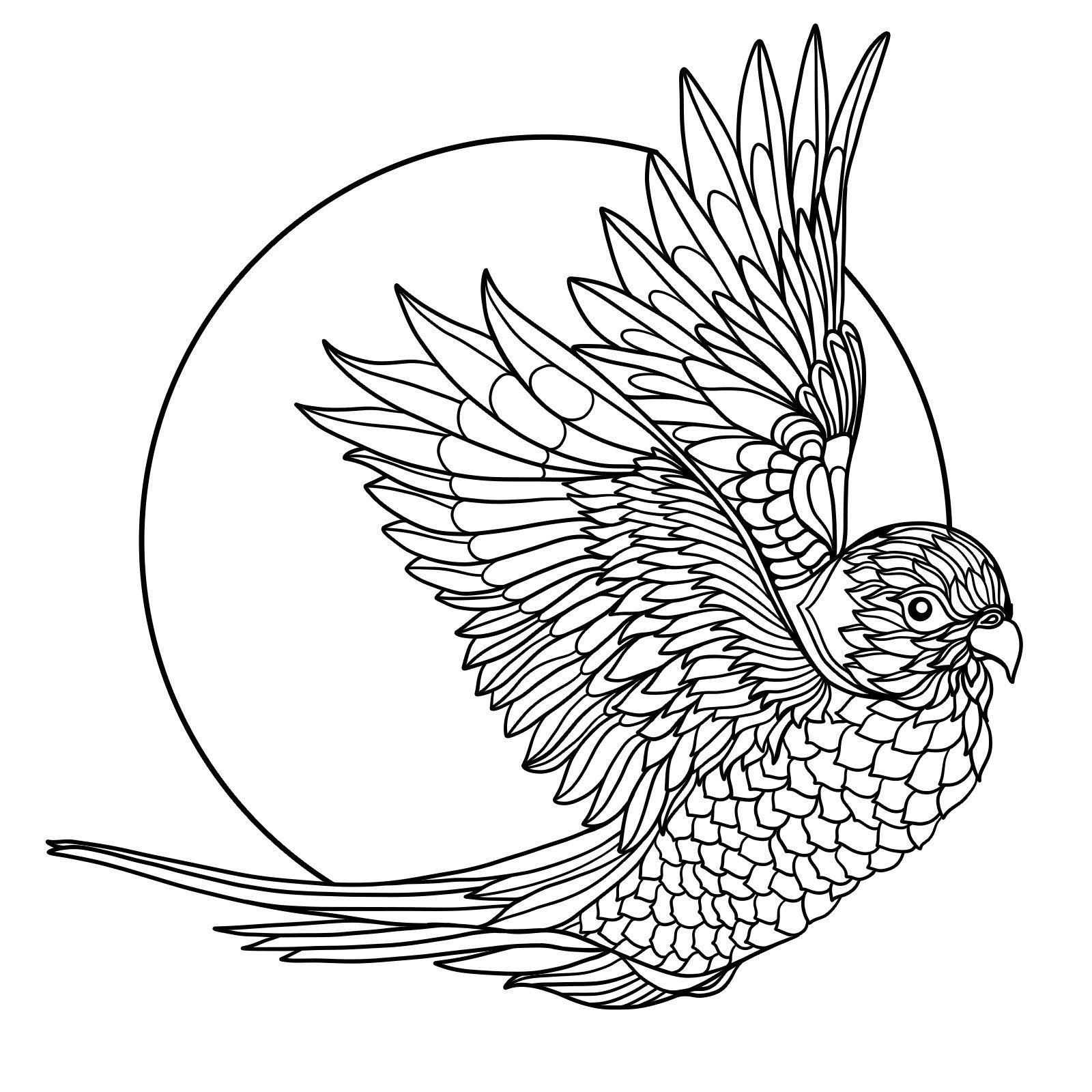 Pin Van Barbara Op Coloring Parrot