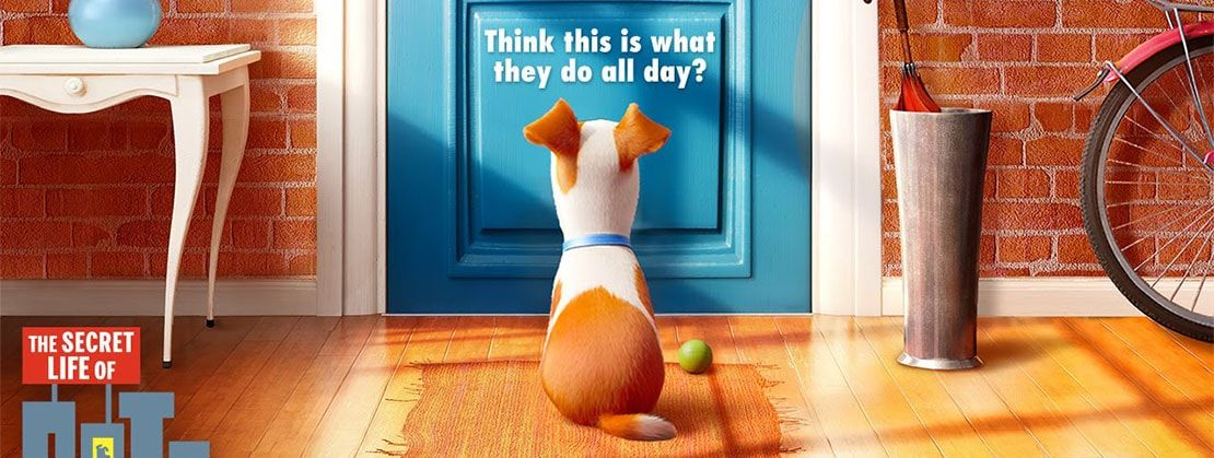 The Soundtrack To The Secret Life Of Pets A 2016 Movie Track List Listen To 11 Full Soundtrack Songs Play 25 F With Images Secret Life Secret Life Of Pets Trailer Song