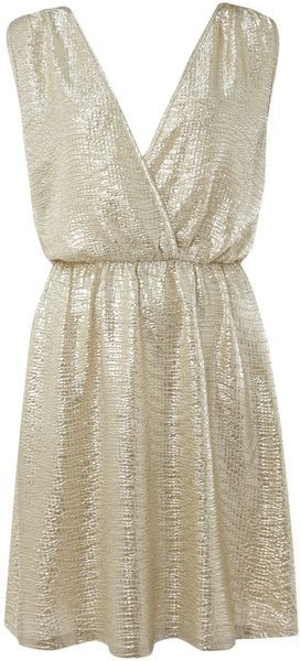 3676ef7348 Brit Boutique pussycat Sleeveless Metallic Dress