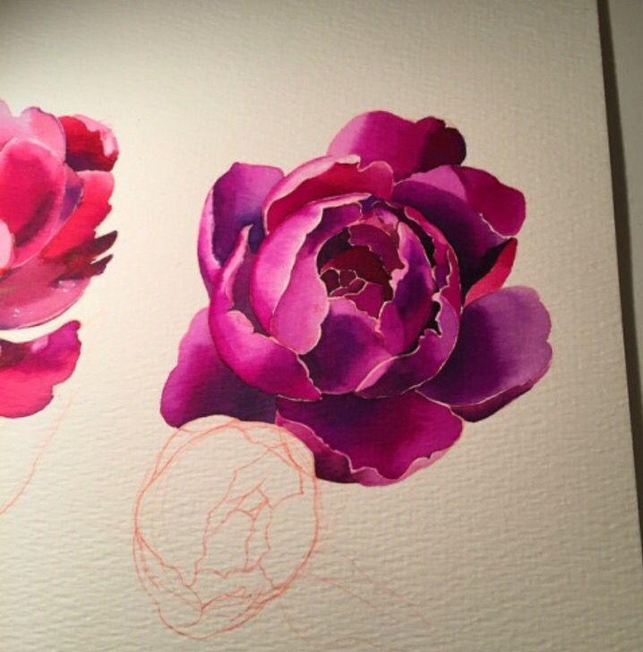 Peony Watercolor Flower Tattoos: Pin On Crayola Avanzada