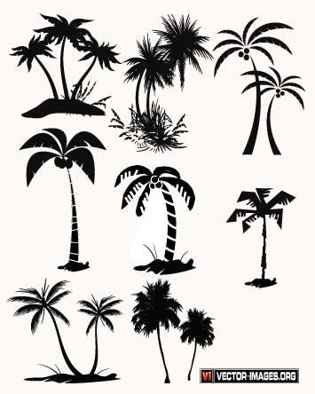 palm tree vector palm tree vector in ai format silhouettes rh pinterest com free palm tree vector art free vector palm tree graphics