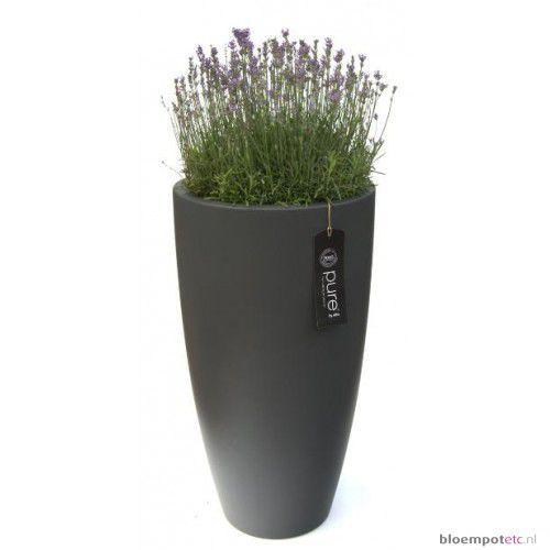 Elegant planters