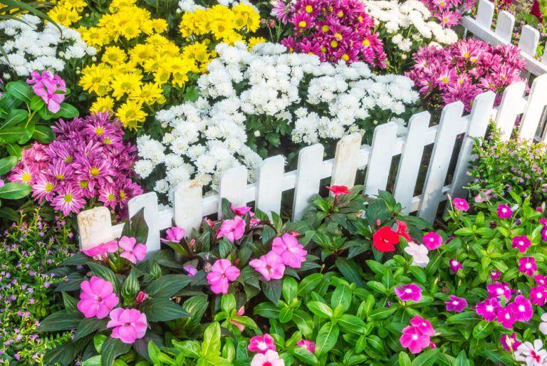 101 Fence Designs, Styles and Ideas (Backyard Fencing) -   23 short garden fence ideas