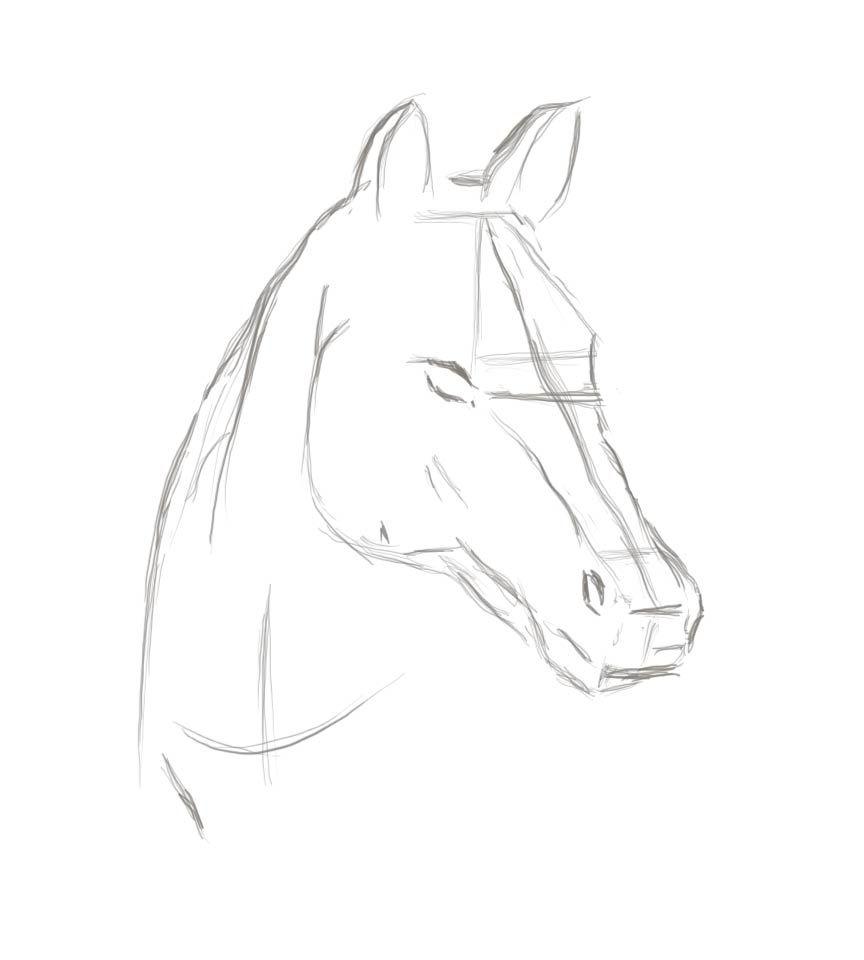 Tutorial  Dibujo caballo  dibujo  Pinterest  Dibujar Caballos