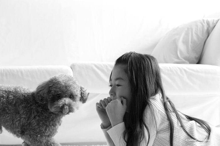 The Myth Of The Hypoallergenic Dog Dog Allergies Hypoallergenic Dogs Allergic To Dogs