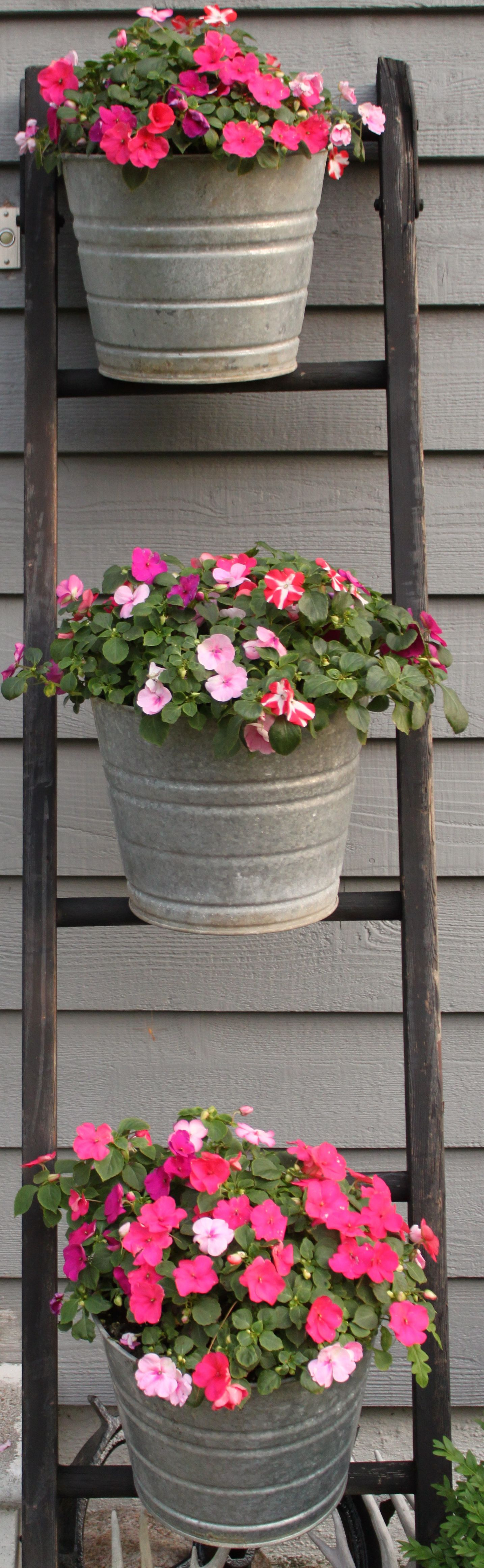 Antique Ladder And Galvanized Steel Buckets Filled With Flowers Flower Bucket Amazing Flowers Antique Ladder