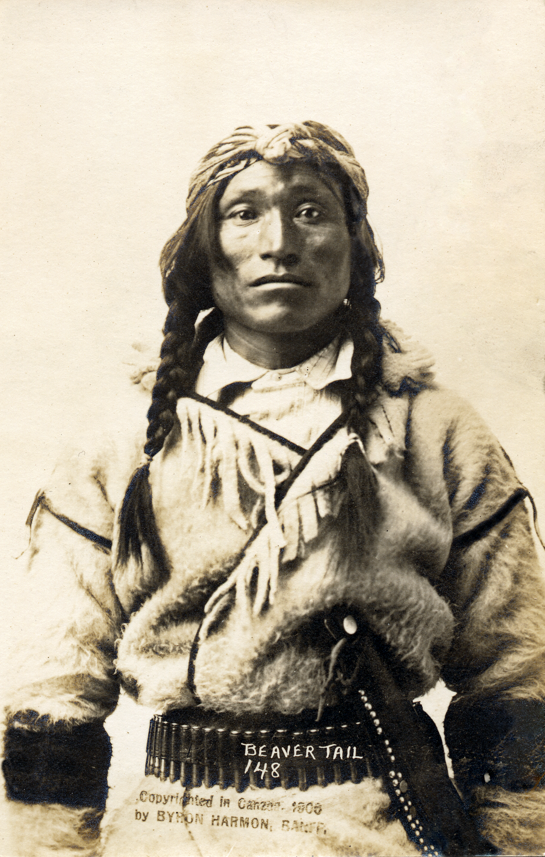Beaver Tail Stony Native BC Canada Byron