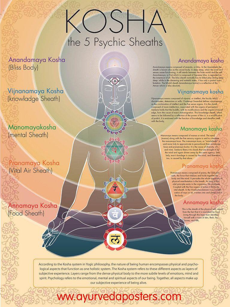 the 5 Koshas |  :ॐ yoga ॐ:  | Yoga bilder, Chakra und Chakren