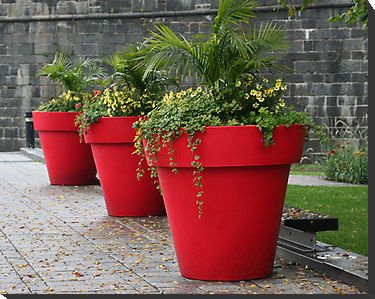 Three Red Flower Pots In Old Quebec City By Laurel Talabere Flower Pots Outdoor Flower Pots Red Flowers