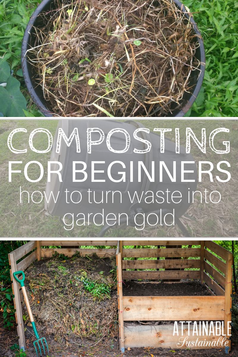 Backyard composting for beginners how to transform - When to fertilize vegetable garden ...