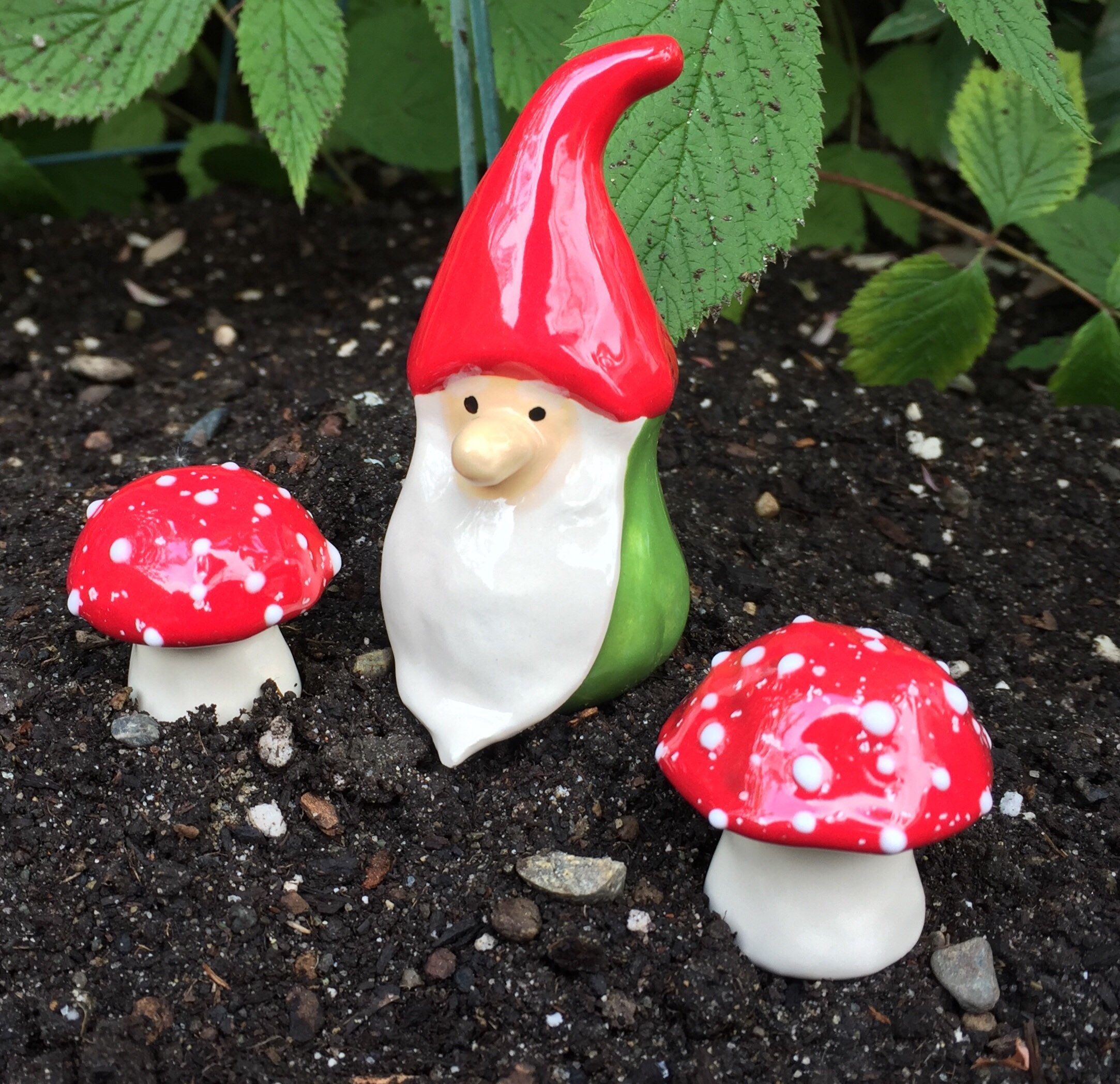 34f9016d779067bb6a21659e93f4a6be - How To Get Rid Of Toadstools In Your Lawn