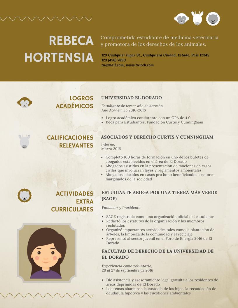 Elaboración Y Venta De Curriculum Vitae (cv) Modelo Cv-0003-1 ...