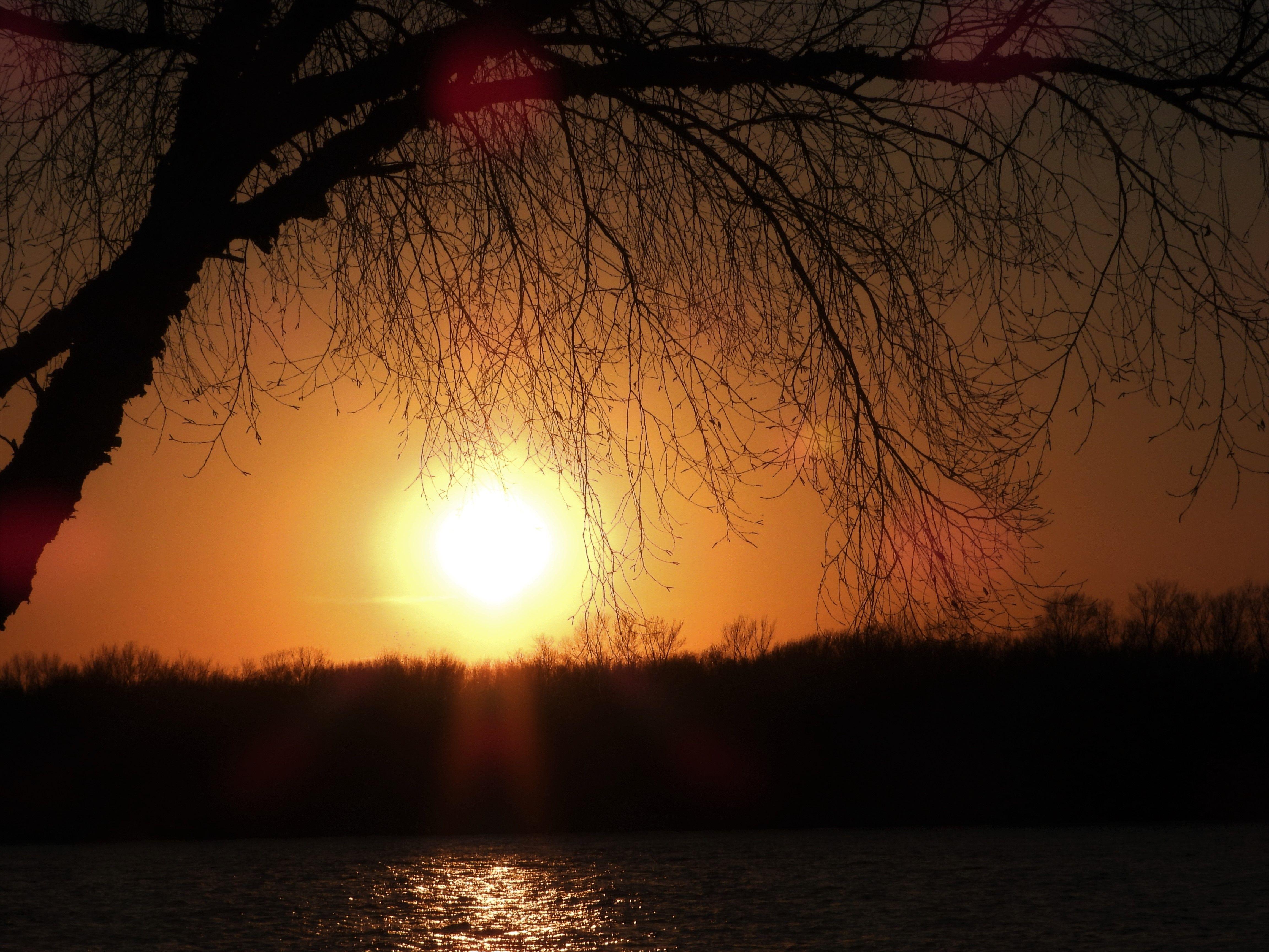 Sunset Savanna IL March 8 2020 by Ken Groezinger in 2020