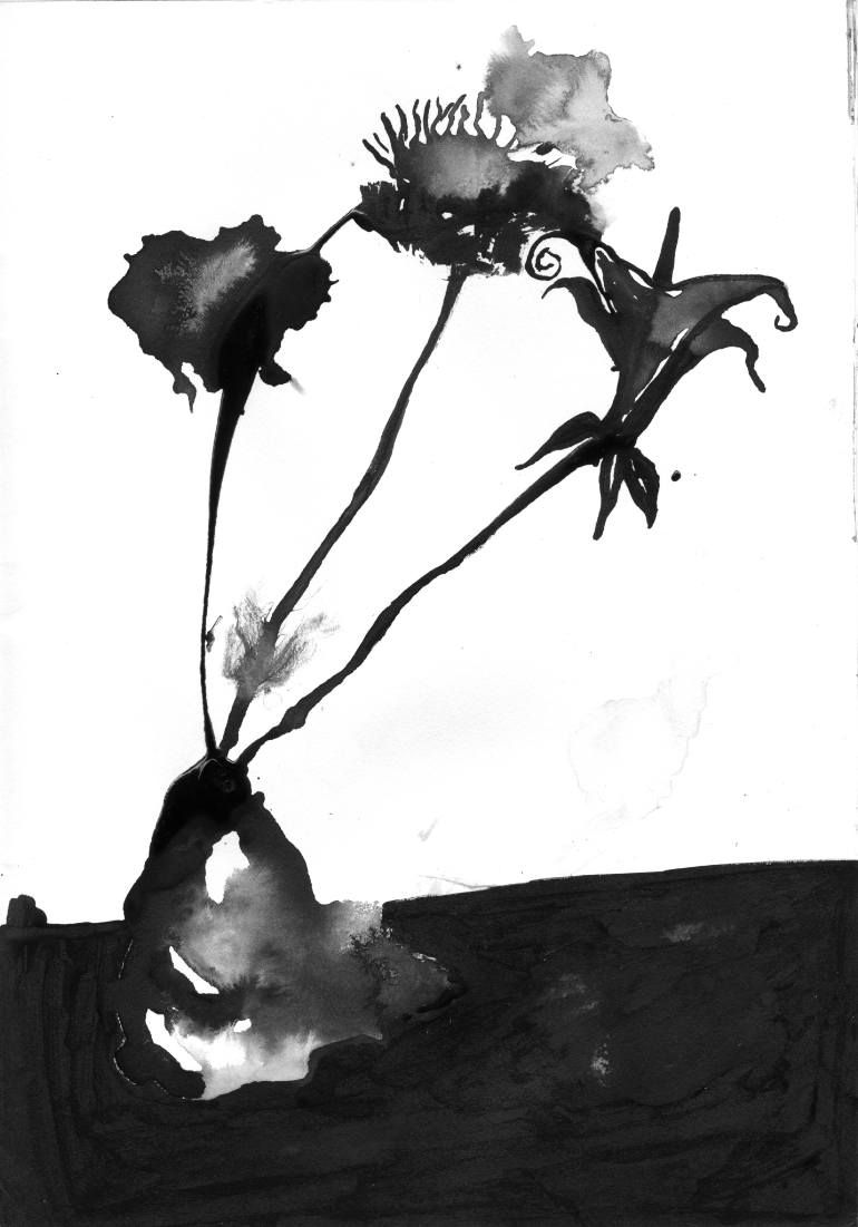 Ink flowers drawing by justin ehrlich still life pinterest