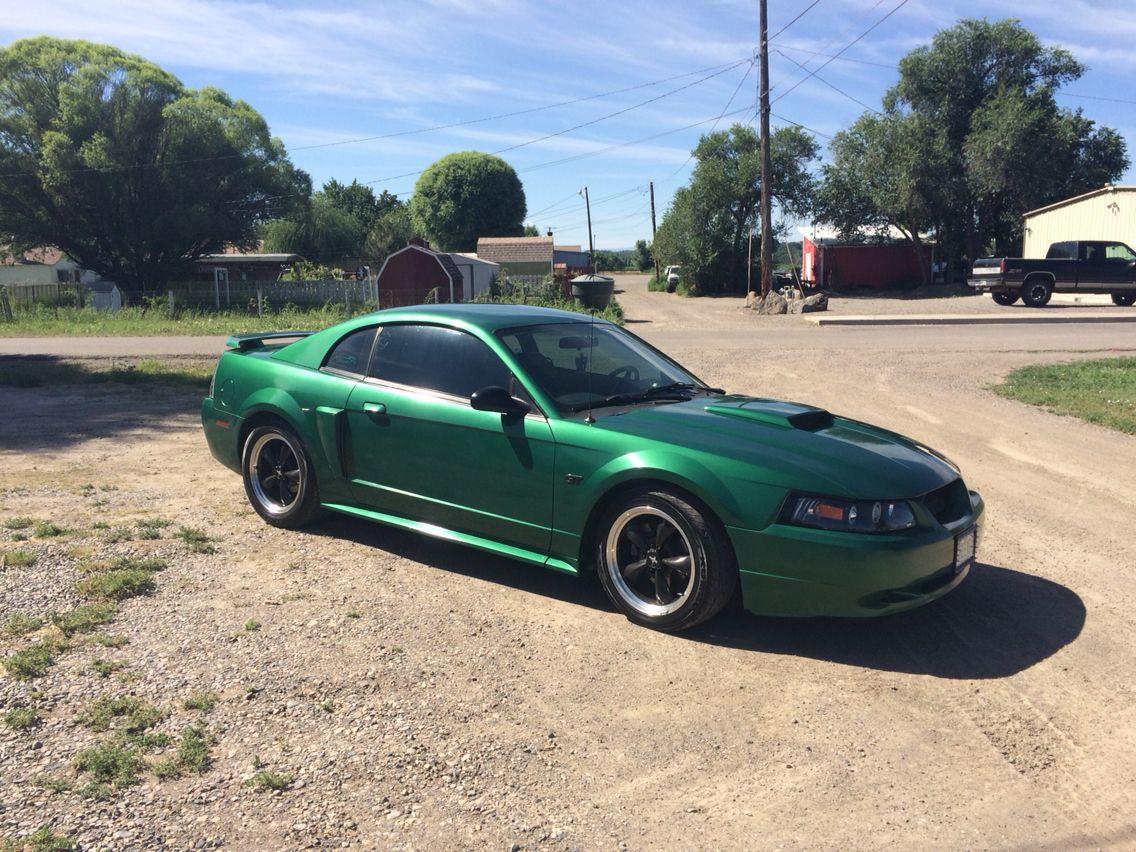 2003 Mustang Gt Electric Metallic Green Mustang Gt 2003 Mustang Mustang Cobra