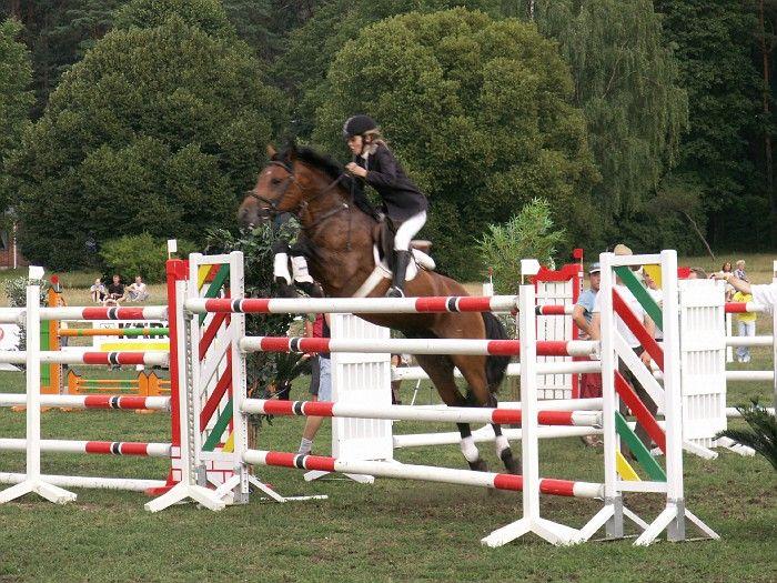 Ponimme Kokosas hyppää tässä Liettuan ponien korkeushyppyennätyksen 155 cm!!!