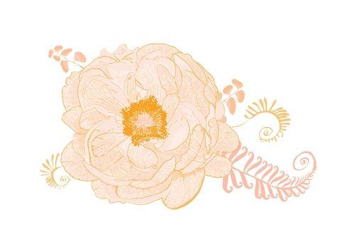 Illustration_ImageTitle.jpg