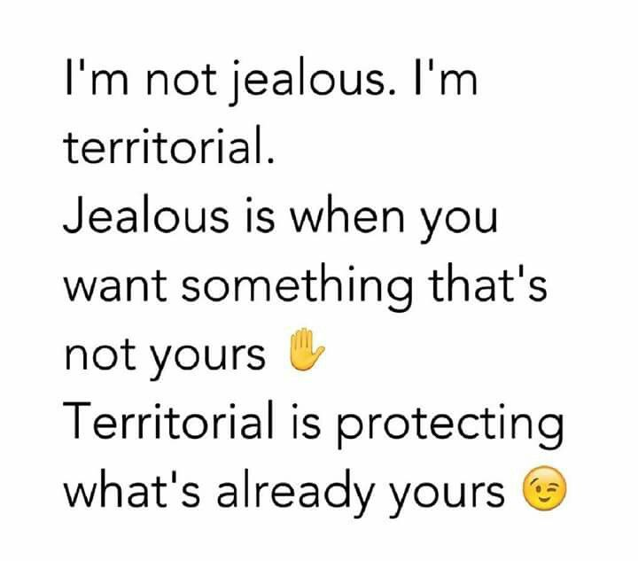 See I Mean Come On People I M Not The Jealous Type I M Just Territorial Lol Heh Im Jealous Life Quotes Boyfriend Quotes